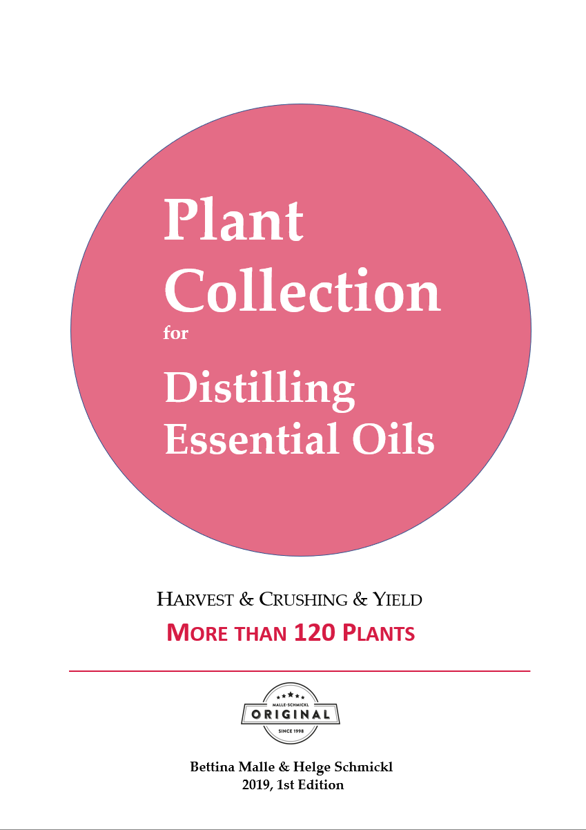 Plant Collection: Essential Oil Recipes